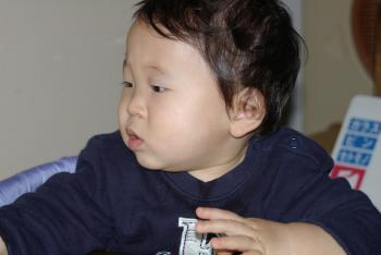 2005.01.15
