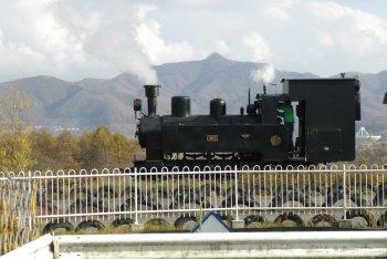 200611043
